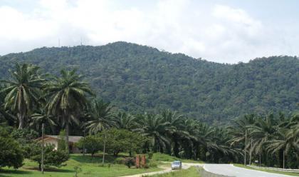 Gunung Pulai Portal Rasmi Majlis Perbandaran Kulai Mpk